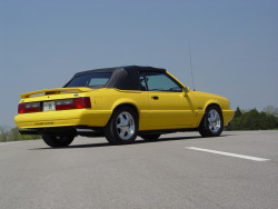 Tedds 1993 mustang lx 5.0