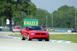 TRACK GUYS Sebring May28-29, 2011 DL - 2 046